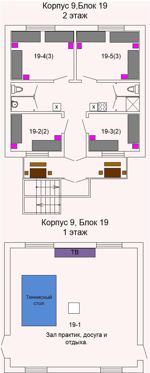 Корпус 19 2015